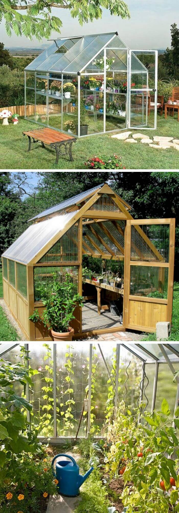 Backyard DIY Mini-Greenhouse