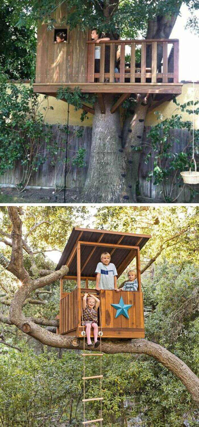 A Backyard with a Dream TreeHouse