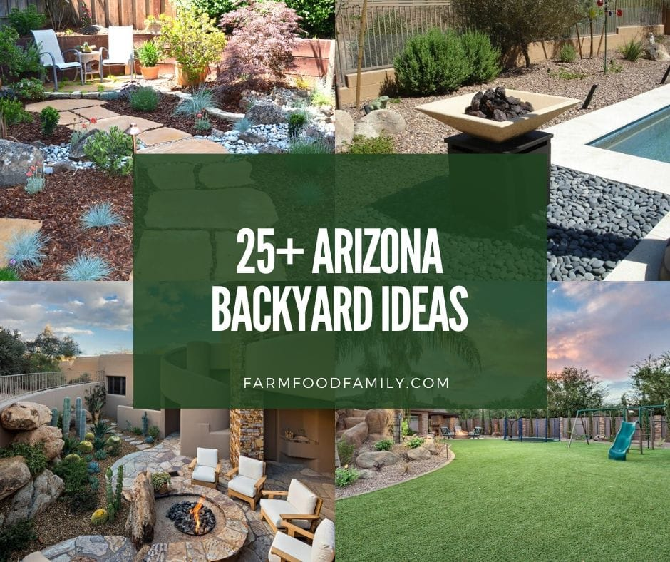 25+ Awesome Arizona Backyard Landscaping Ideas On A Budget ... on Patio Ideas 2020 id=85483