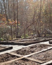 Get the Garden Ready For Winter