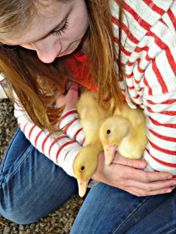 duck move 2