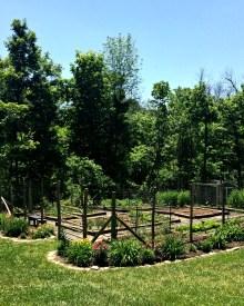 Garden Update – May Edition