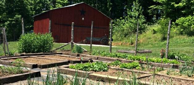 Detailed Garden Plan