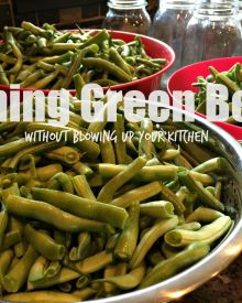 Pressure Canning Made Easy – How to Can Green Beans in 5 Simple Steps