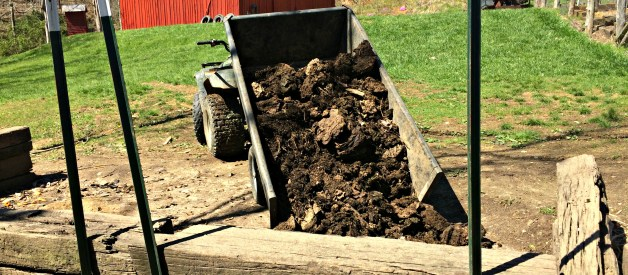 How to Turn Manure into Soil