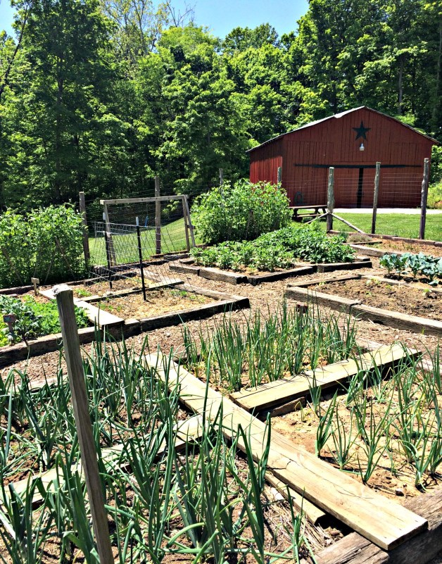 may garden 12