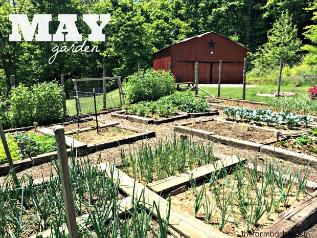 may garden 15