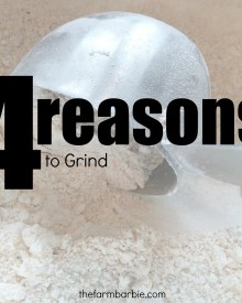 You Should Grind Your Own Flour – 4 HUGE Reasons