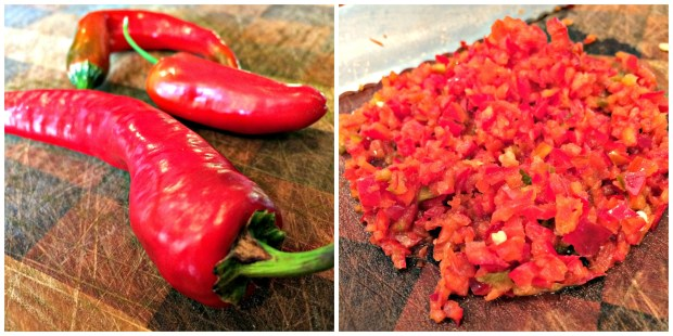 red pepper collage