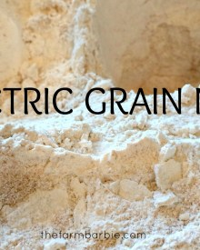 Electric Grain Mill – An Introduction