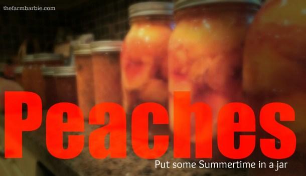 peach day 2.4