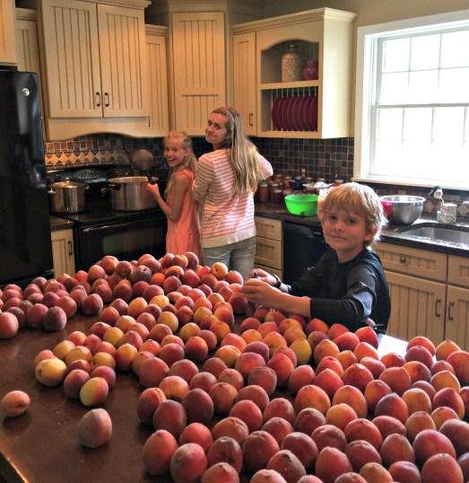 peach day 7