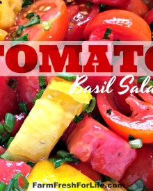 Simple Tomato Basil Salad (Premium)
