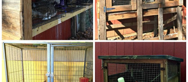 Choosing the Right Bunny Hutch – It's more Complicated than You Think (Premium)