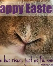 Happy Easter! (Premium)