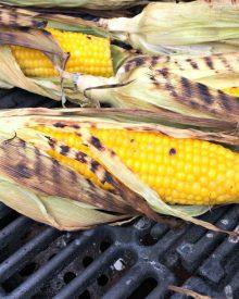 Grilled Corn on the Cob (Premium)