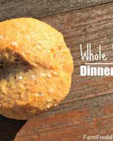 Easy Whole Wheat Dinner Rolls (Premium)