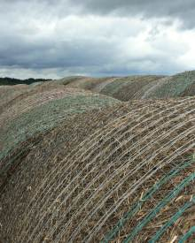 Turning the Hay – Video (Premium)
