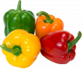 peppers-isolated-sweet_110908451