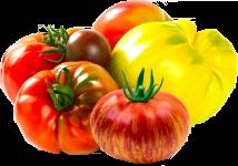 tomato-kind-heirloom
