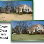 4000-Sq-Feet-4Ever-Green-Grass-and-Turf-Paint-0-0