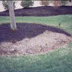 CurbAppeal-300-Sq-Ft-Black-Forest-mulch-color-concentrate-Model-bf0004-Home-Garden-Store-0