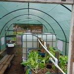 Quictent-2-Doors-Heavy-Duty-20x10x6-Portable-Greenhouse-Large-Walk-in-Green-Garden-Hot-House-8-vents-2-doors-Perfect-Flow-through-Ventilation-0-1