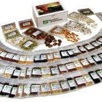 Survival-Essentials-135-Variety-Premium-Heirloom-Non-Hybrid-Non-GMO-Seed-Bank-23335-Seeds-All-In-One-Super-Value-PakVeggies-Fruits-MedicinalCulinary-Herbs-Plus-9-FREE-Rare-Tomato-Varieties-0-0