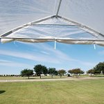 DELTA-Canopies-Large-Walk-in-Green-Graden-House-Commercial-Grade-40×20-Clear-Greenhouse-0-2