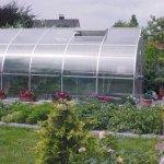 Exaco-RIGA-V-165-Square-Foot-Greenhouse-0