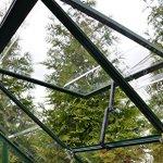 Palram-Nature-Harmony-Greenhouse-6-wide-x-8-long-0-0