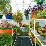 Solexx-Garden-Master-Greenhouse-5MM-Deluxe-8x12x89-0-0