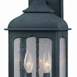 Troy-Lighting-Henry-Street-185H-2-Light-Outdoor-Wall-Lantern-Colonial-Iron-Finish-with-Clear-Seeded-Glass-by-Troy-0