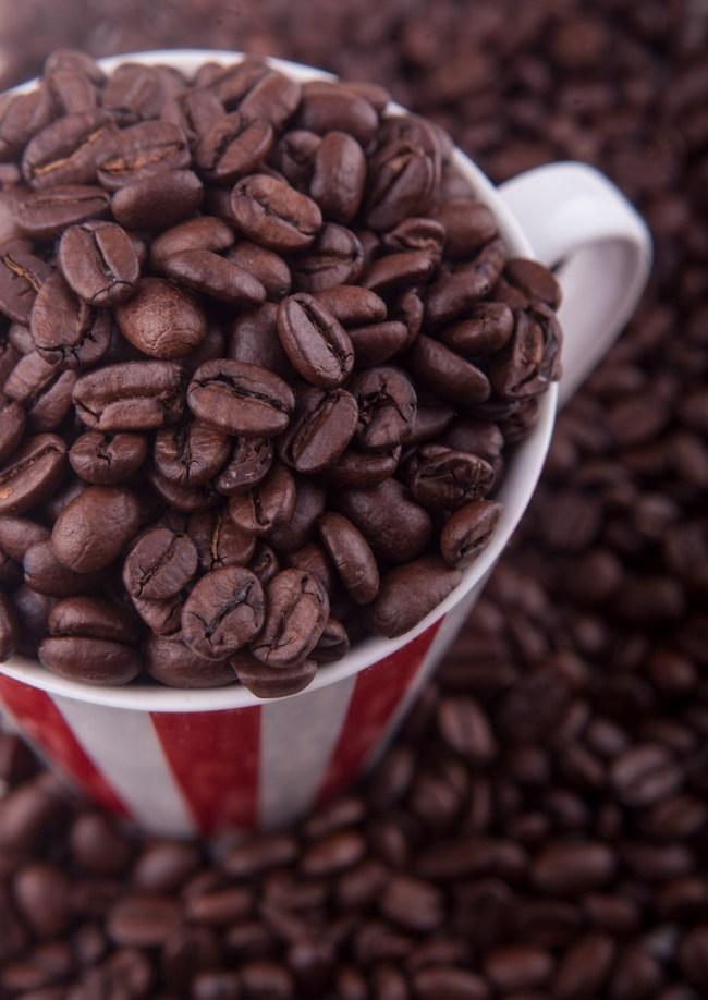 French Coffee - farm girl | Big City