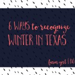 6 ways to recognize winter in Texas