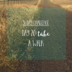 31 Day Challenge | Day 20: Take a walk