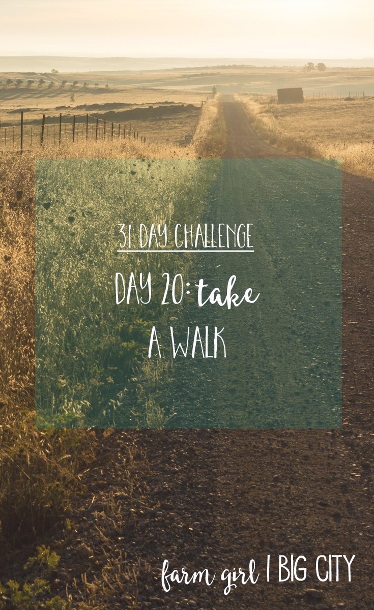 31 day challenge to building relationships with your loved ones - Day 20 take a walk (via farm girl big city)