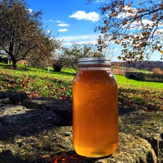 Pure Honey from the Brown Dog Farm