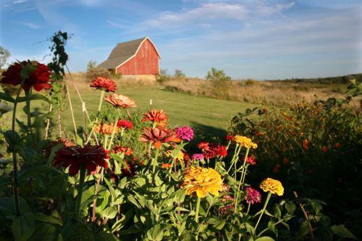 Farmhouse Barn w :flowers