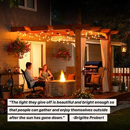 brightech ambience pro globe waterproof led outdoor string lights 26 ft patio lights with 1w edison bulbs create