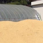 籾殻で肥料作っちゃおう
