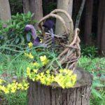 春の風を感じながら山の畑で作業!!