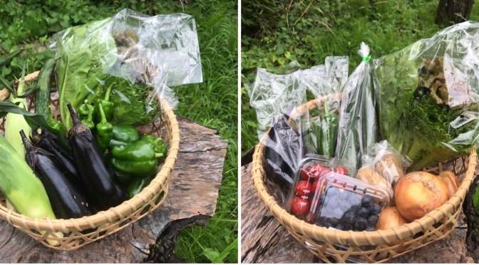 有野実苑野菜パックと旬菜里野菜パックを発送しました(2020年07月04日)