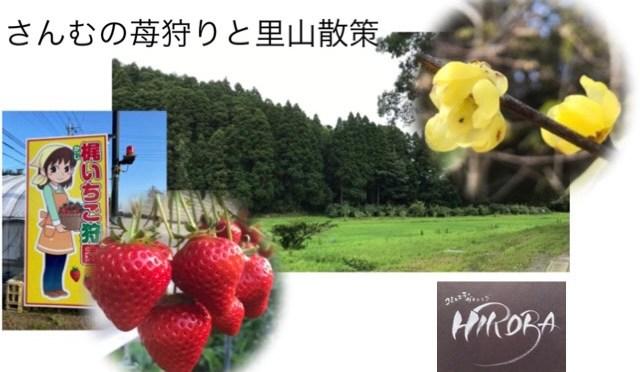 【1月17日】苺狩りと里山散策〜さんむの魅力発信〜
