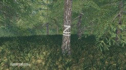 placeable-skidtrail-trees-v1-0-0-0_10_FarmingSimulatorNET