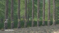placeable-skidtrail-trees-v1-0-0-0_1_FarmingSimulatorNET