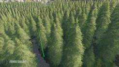 placeable-skidtrail-trees-v1-0-0-0_2_FarmingSimulatorNET