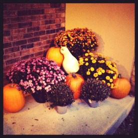 Fall decorations- bringing a little country into my home in town
