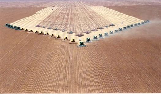 https://i2.wp.com/farmlandgrab.org/wp-content/uploads/2010/06/colheita_milho.jpg