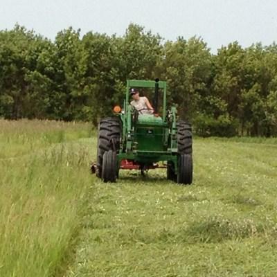 Matt Cutting Hay with the Sickle Mower
